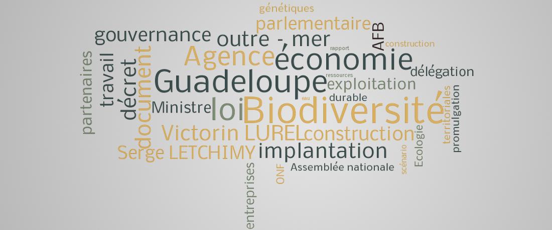 Biodiversité, économie et gouvernance